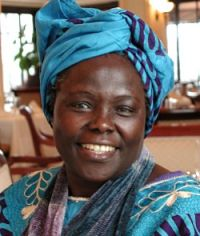 Wangari Maathai the Tree Lady of Africa