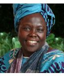 Wangari Maathai the Tree Lady of ...